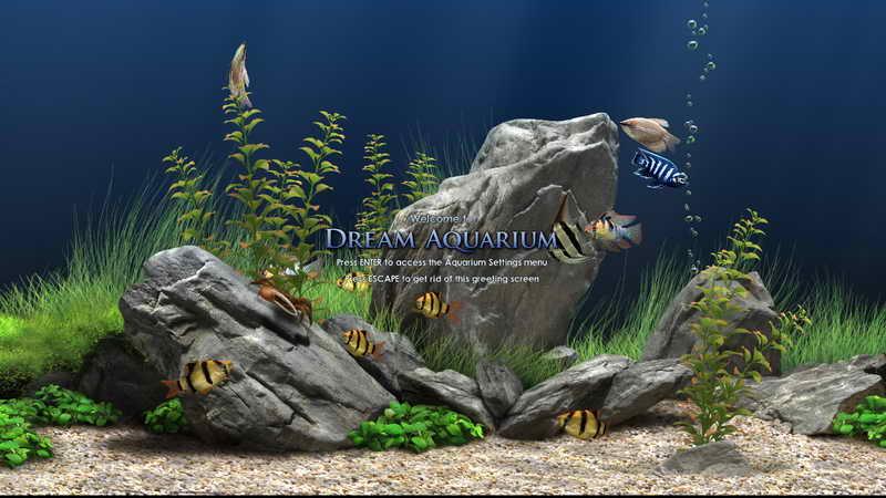 Dream Aquarium(梦幻水族馆)