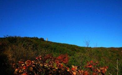 五老山国家森林公园旅游-五老山国家森林公园旅游