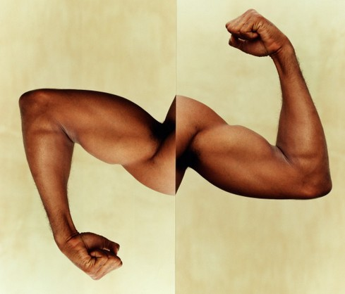 訓練有方 何以打造完美二頭肌