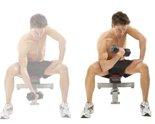 15分鐘啞鈴訓練加強手臂肌肉
