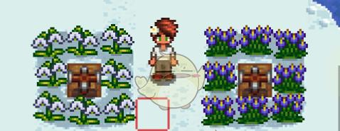 星露谷物语六种冬季新作物MOD下载